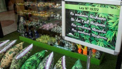 Venta de marihuana en farmacias será anunciada en breve en Uruguay