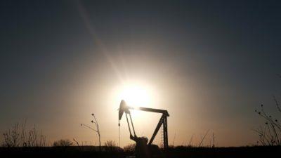 Petróleos de Venezuela reporta caída de ingresos de 33,5% el año pasado
