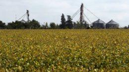 Los precios agrícolas suben impulsados por el clima esperado en EEUU