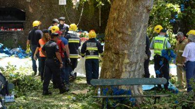 Portugal: caída de árbol provoca 13 muertos en Madeira