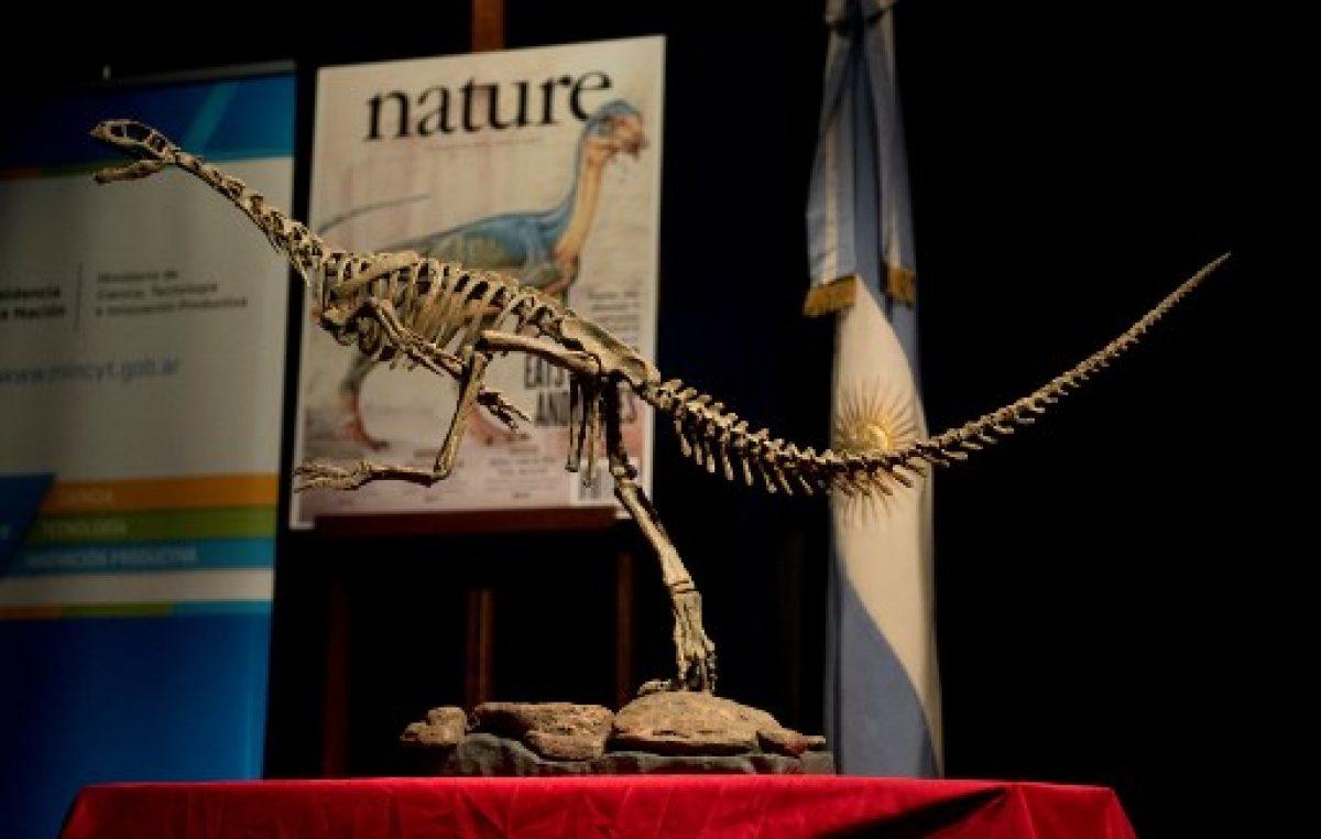 """El Chilesaurus, """"uno de los dinosaurios más intrigantes"""", revela sus secretos"""