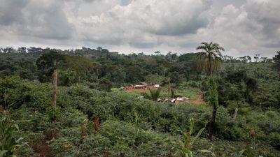 Cuarenta muertos por un alud en localidad de pescadores en RD Congo (oficial)