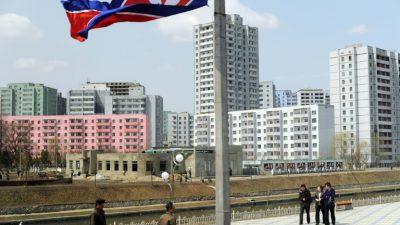 ¿Para qué van los famosos a Pyongyang?